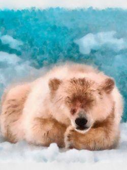 Арт.25507 Медведь