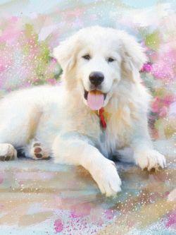 Арт.25556 Собака