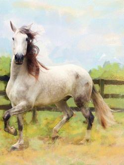 Арт.25558 Конь