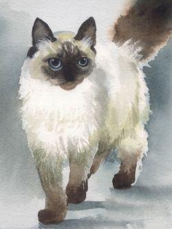 Арт.25560 Сиамский кот