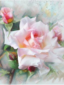 Арт.25820 Роза