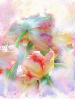 Арт.25823 Тюльпаны