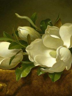 Арт.33411 Белые цветы